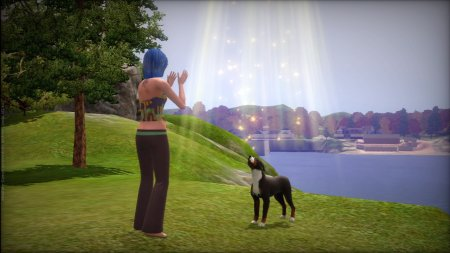 The Sims 3: Pets (2011) XBOX360
